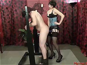 Many female dom dominatrixes dominate subordinated males
